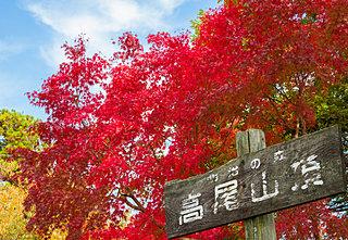 山の紅葉が見ごろに♪初心者も楽しめる関東の山〈レジャー特集|2018〉