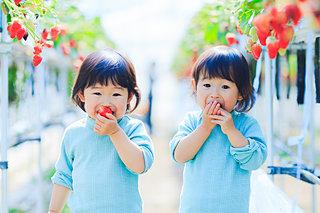 子どもと一緒に♪大阪近郊のいちご狩りへ!〈レジャー特集|2019〉