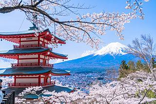 甲信の桜は日本情緒にあふれてる♪富士山や古城とともに春を楽しむ桜に逢いに行こう!