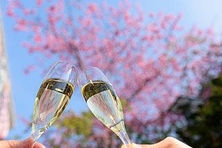 新たな門出を「シャンパン」で祝うのはなぜ?注目の製法「ノン・ドザージュ」から紐解く