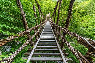 絶景♪ゆらゆら!?ゾクゾク~ッ!GWは「歩いて渡れる架橋」へ 関西・四国・九州編