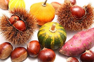 女性もこどもも大好きな秋の味覚「芋栗南瓜」をご紹介します