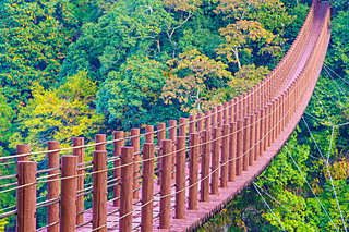 熊本・大分・宮崎・鹿児島の紅葉を見に行こう♪九州の紅葉名所4選