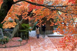 佐賀・長崎・福岡の紅葉を見に行こう♪九州の紅葉名所4選