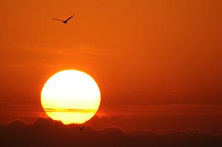 北日本の「初日の出」を見よう!〈2020 北海道・東北〉