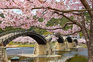 2020年の桜に逢いたい♪ 中国地方のさくら名所4選