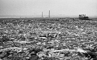 待ったなしのごみ問題から地球と未来の子供たちを救うには?5月30日「ごみゼロの日」