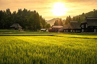 お取り寄せできる「道の駅」♪おうちで旅気分を楽しもう〜東日本編〜