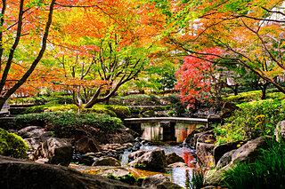 東京・横浜の紅葉が見ごろに!古き良き庭園でお散歩はいかがですか