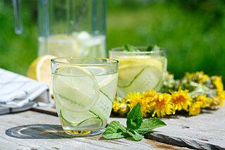 熱中症対策にも!「麦茶」「はちみつ」「きゅうり」をアレンジして、美味しく手軽に水分補給