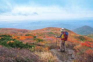 秋山登山に挑戦しよう!秋の山で気をつけるべきポイント